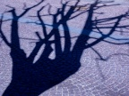 Brunico, Tree Shadow